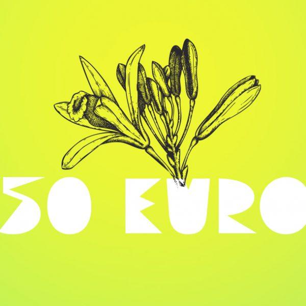 50 Euro Gutschein ab sofort erhältlich!